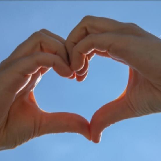Kundenstimme Herzhand
